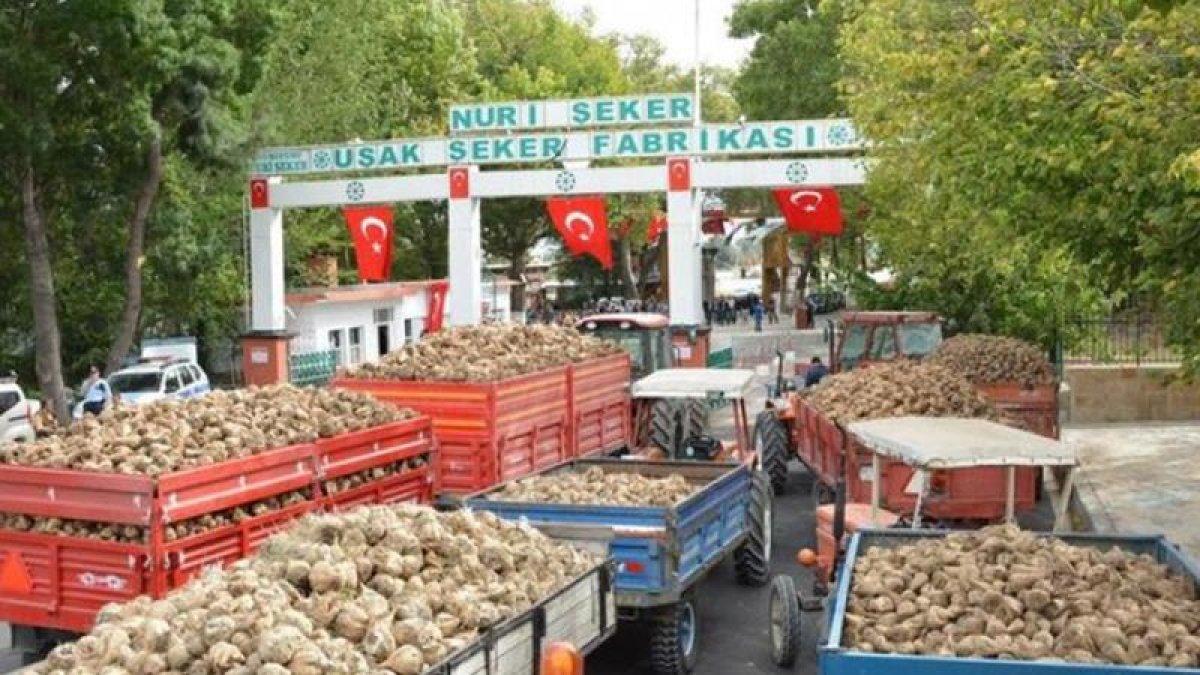 Türkşeker'den skandal talimat: Üretim hazırlıklarını durdurun!