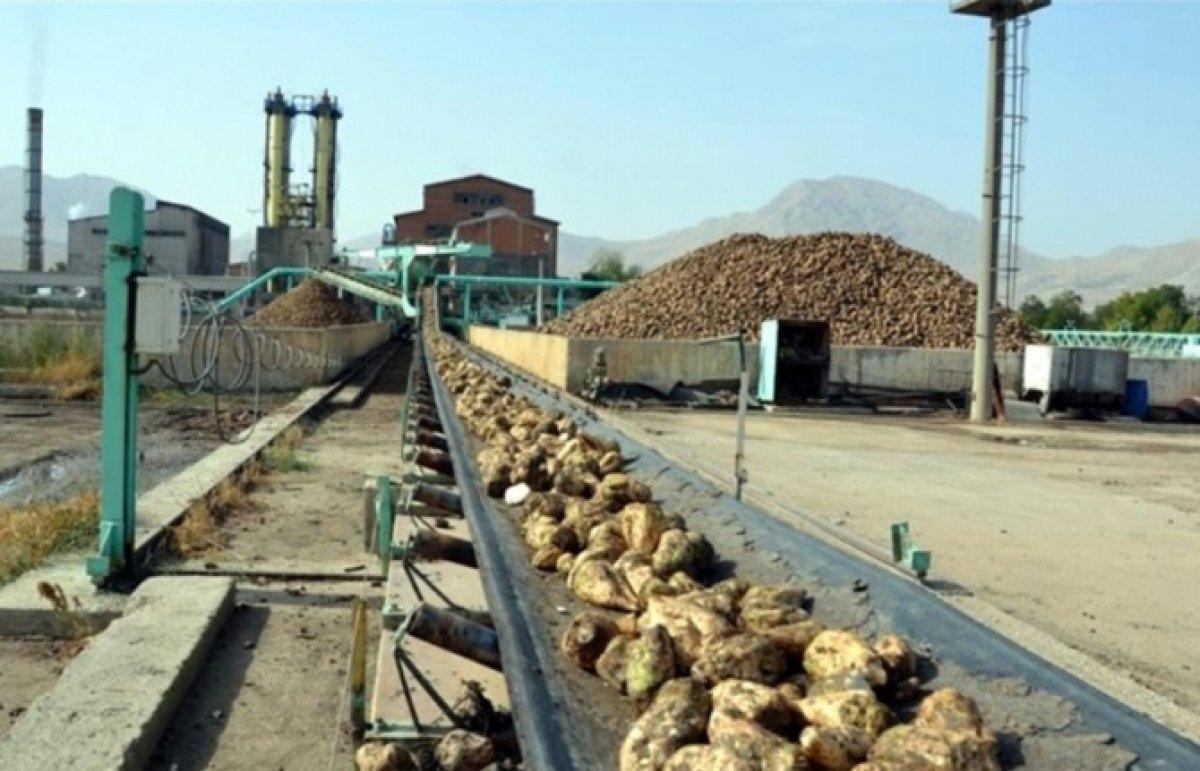 Krizde Çıkmaz Sokak: Şeker Fabrikalarının Özelleştirilmesi