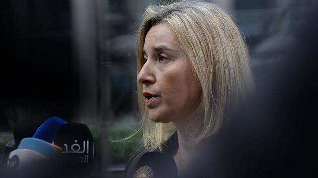 Türkiye'nin Suriye Operasyonu Avrupa Birliği'ni Rahatsız Etti