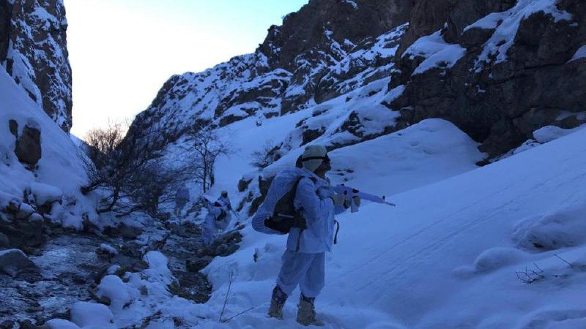 Mehmetçikten PKK'nın Kış Üslenmesine Darbe