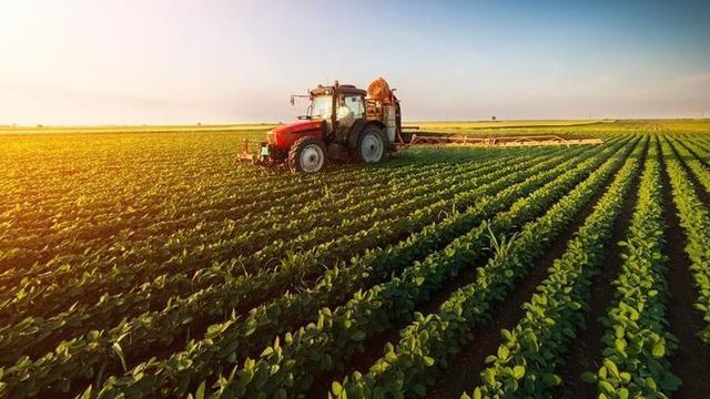 Türkiye'de Tarımın Sorunları