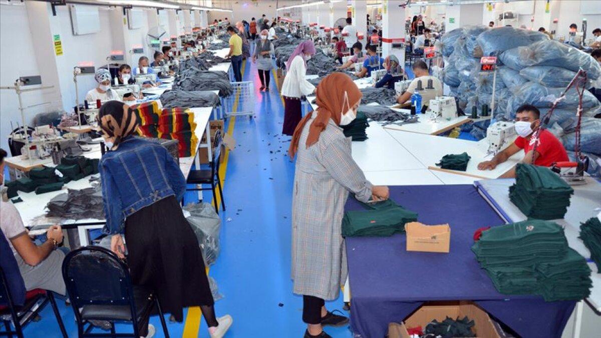 Muş'a Dönüp Fabrika Kurdular İhracata Başladılar