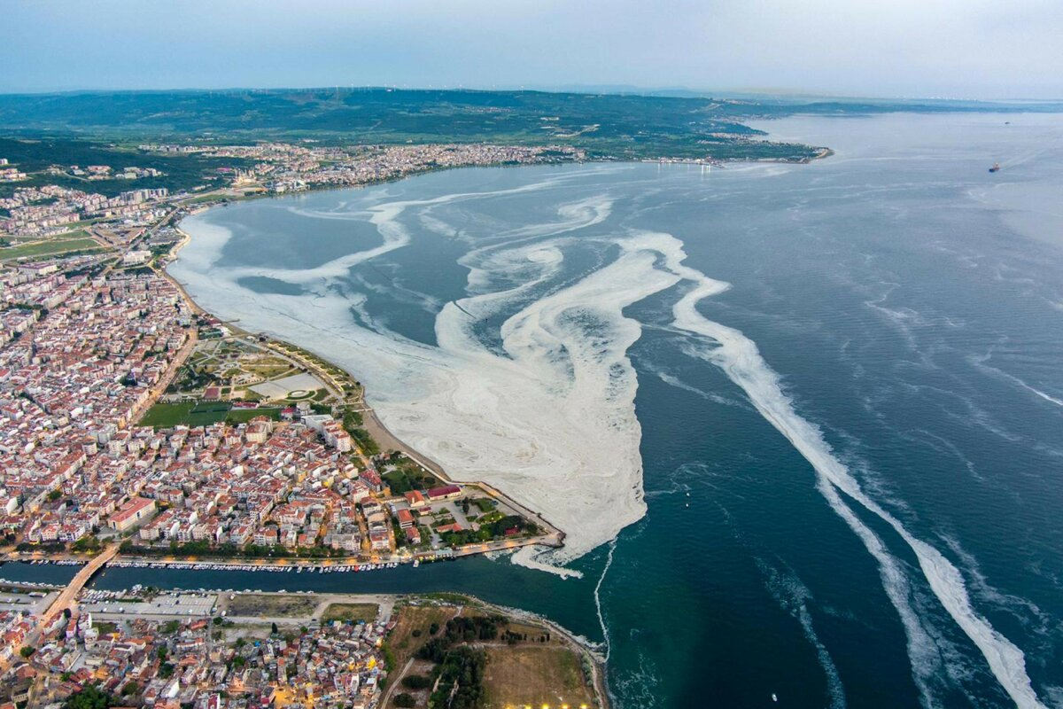 Marmara Denizi'ni kurtaracak 22 adım