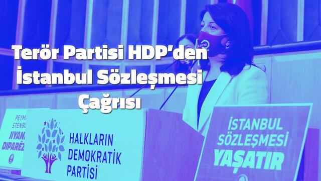 Terör Partisi HDP'den İstanbul Sözleşmesi Çağrısı