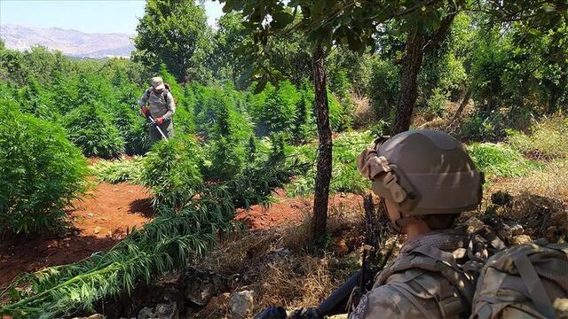Emniyetten 2021 Türkiye Uyuşturucu Raporu
