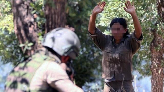 Yakalanan Terörist Ormanlarımızı PKK'nın Yaktırdığını İtiraf Etti